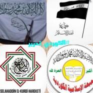 """السلفيون الأكراد في إدلب.. تحالف غير مكتمل مع """"تحرير الشام"""""""
